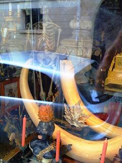 Paris, the 6th, eccentric boutique