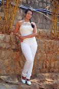 Ester Noronha Photos from Bheemavaram Bullodu-thumbnail-8