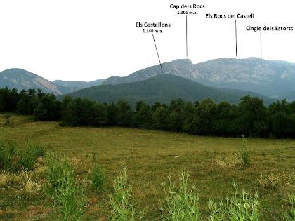 Camps de la Vileta amb els Rocs de Castell al fons