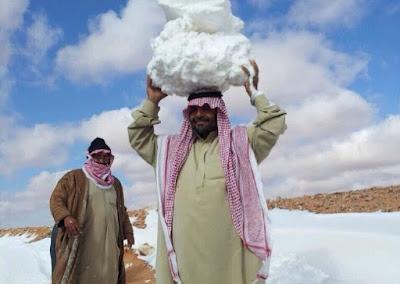 Salji Turun Di Arab Saudi