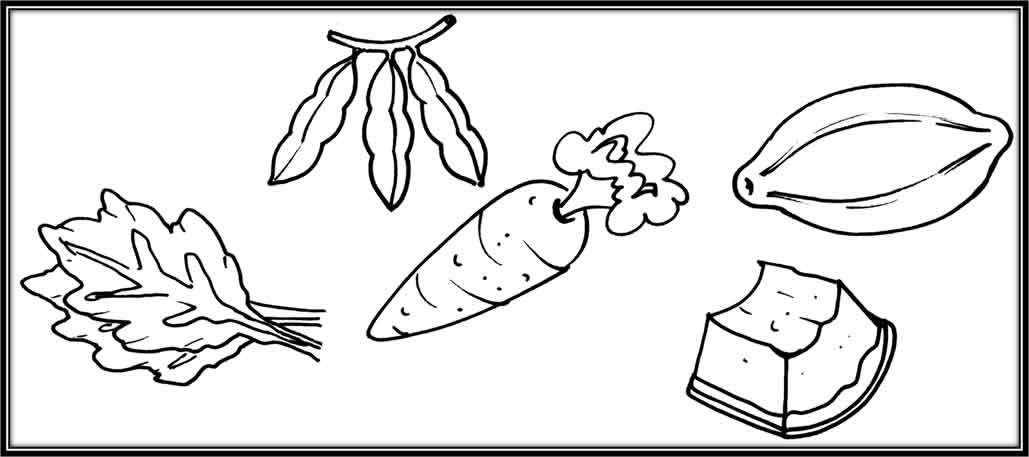 5 alimentos constructores para colorear - Imagui