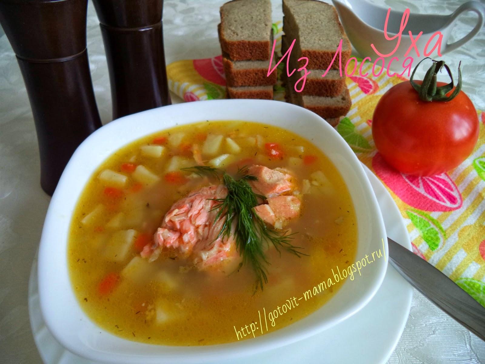 Рецепт ухи из лосося с пошаговым фото