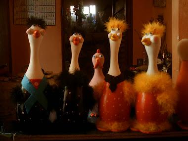 casais de avestruzes(loiras e morenas)