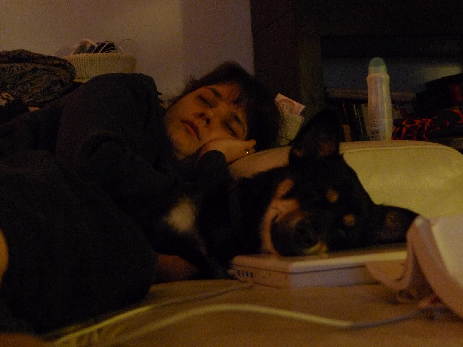 Famille Guérard-Tremblay: Hommage à mon p'tit chien