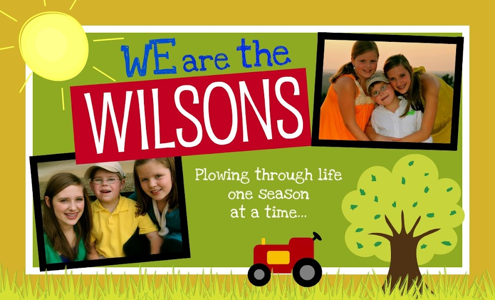 We Are The Wilsons
