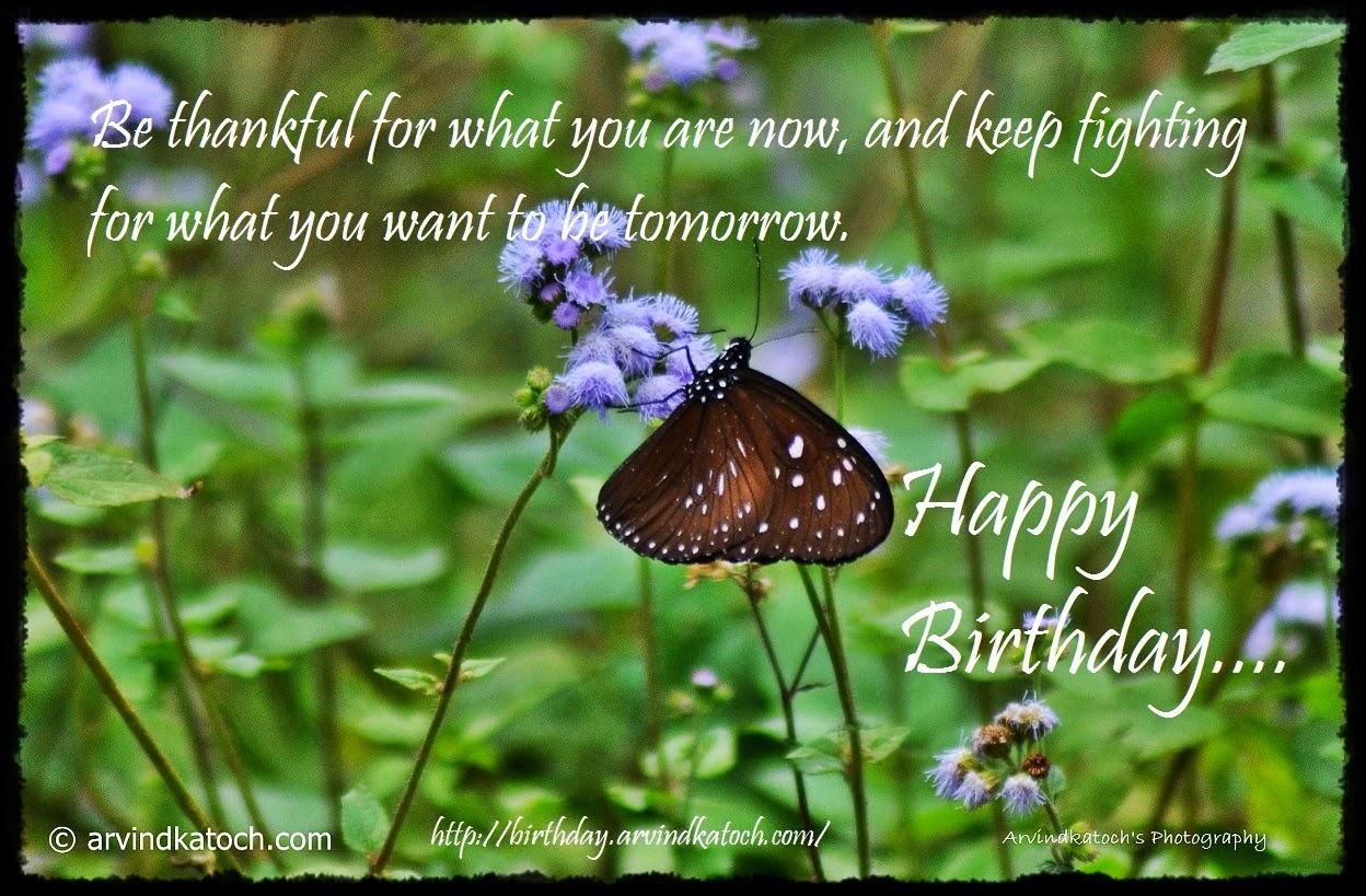 Thankful, fighting, tomorrow, Happy Birhday, Butterfly, Card,