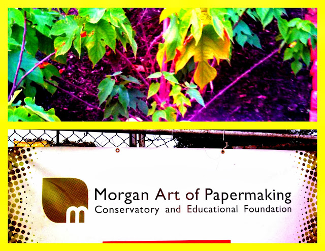 Morgan Conservatory: Paper Arts in CLE