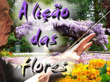 A Lição das flores