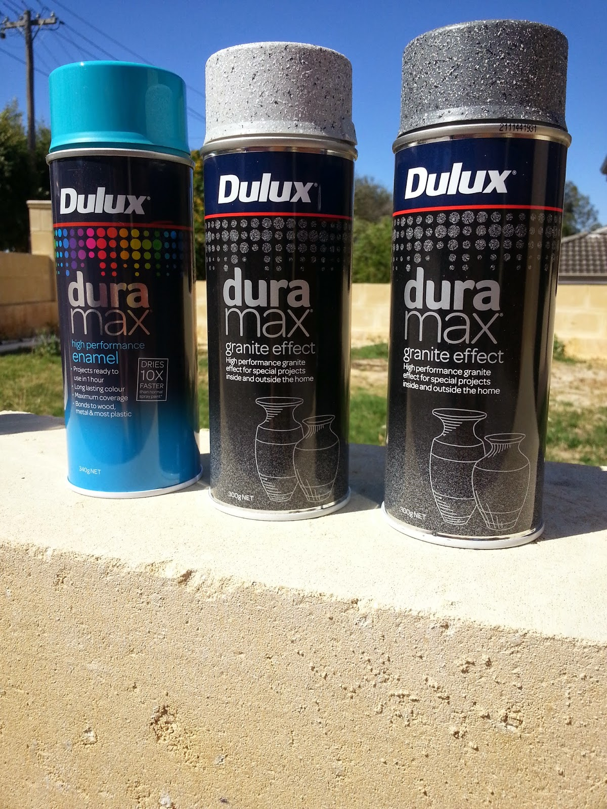 Jarrah Jungle A Whole Lot Of Painting With Dulux Duramax A Giveaway