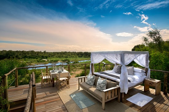 Safari Fusion blog | A bed with a view | Bird's eye view from Lion Sands Tinyeleti Treehouse, Kruger South Africa