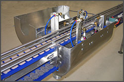 NeXtgen Table Top Sanitary Conveyor With Optional Accessory Product Washer