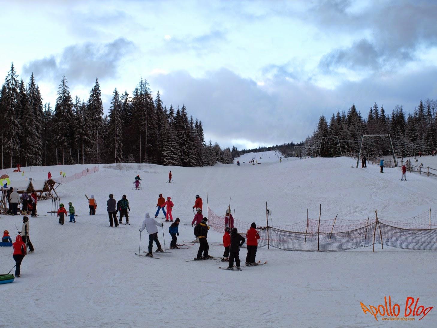 Partia de schi Havas Pasul Bucin