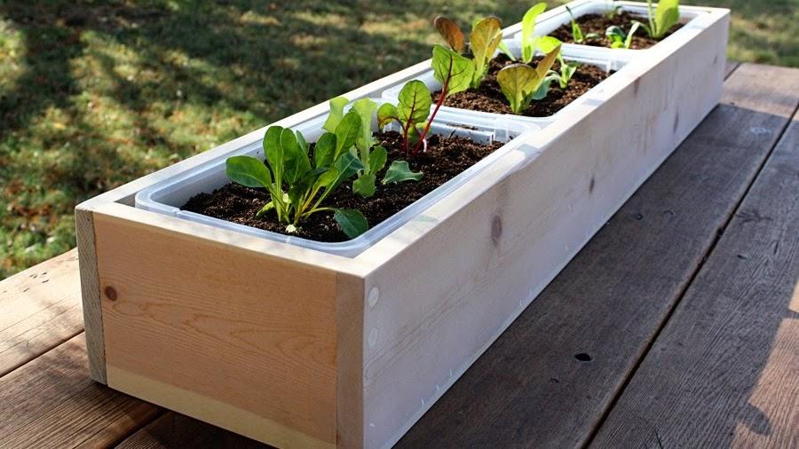 TELUS Garden   Building Garden Boxes