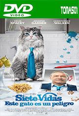 8 - Siete vidas, este gato es un peligro (2016) [DVDRip/Castellano] [Multi/MG]