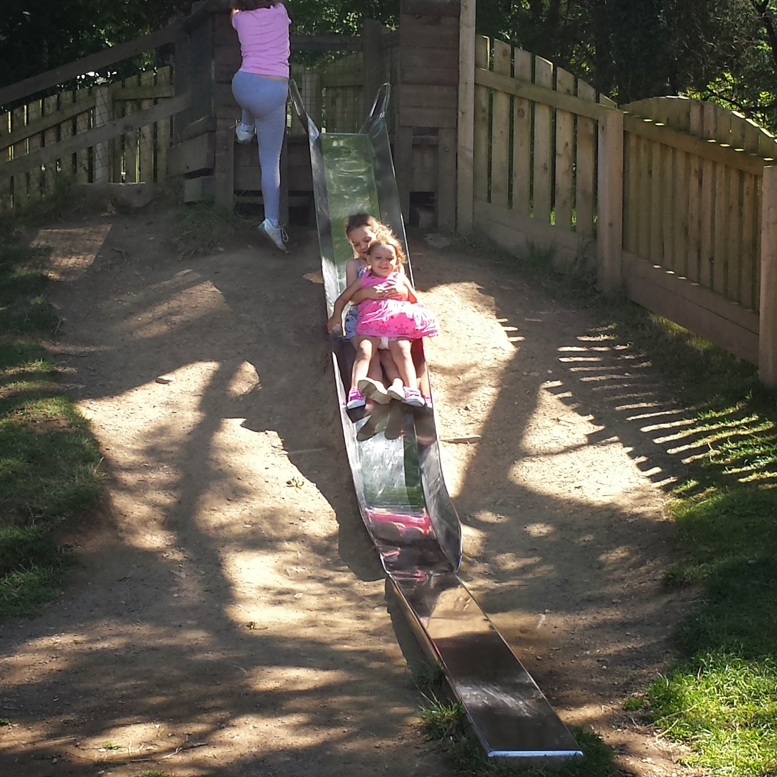 Scolton Manor Family Fun Country Kids pembrokeshire Wales Day Out Trip