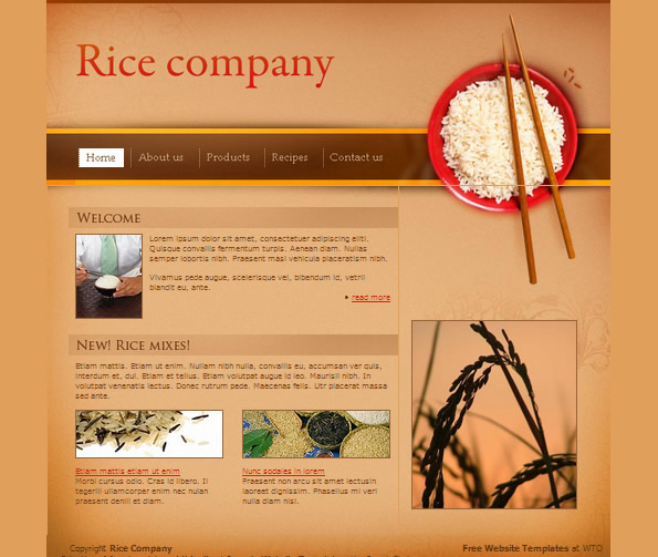 Ecommerce Site Name : Rice Brown