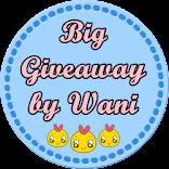 Big Holiday Giveaway by Wani