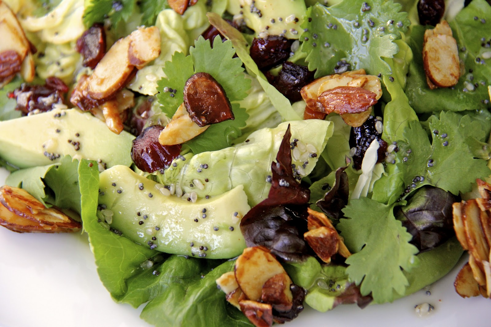Avocado-Cranberry Salad