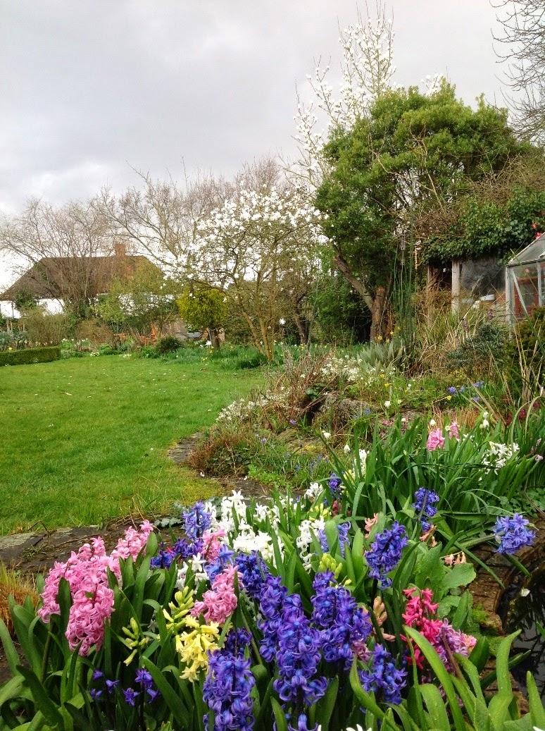 John Grimshaws Garden Diary: 6.30 - 6.40 am