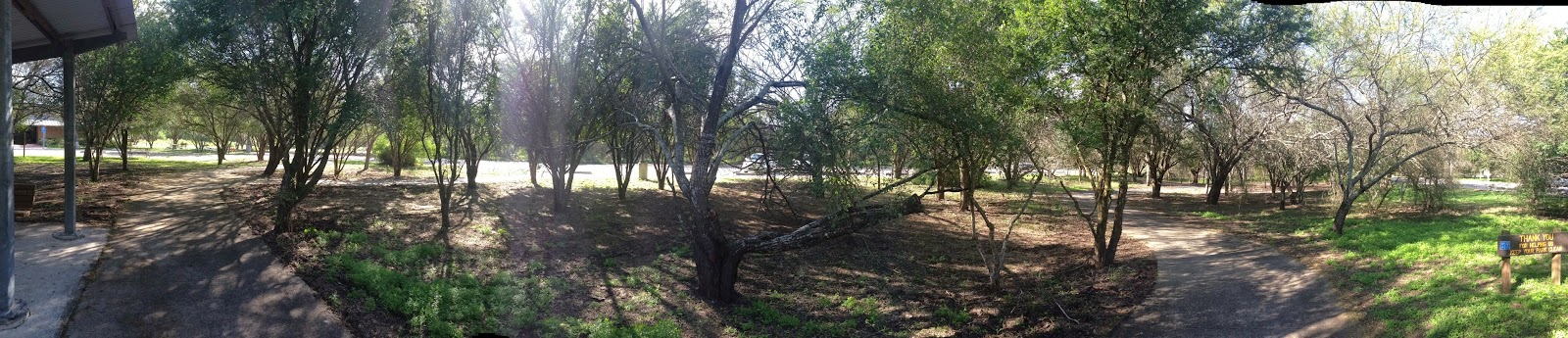 The parking/picnic area at Resaca de la Palma State Park, Brownsville, TX