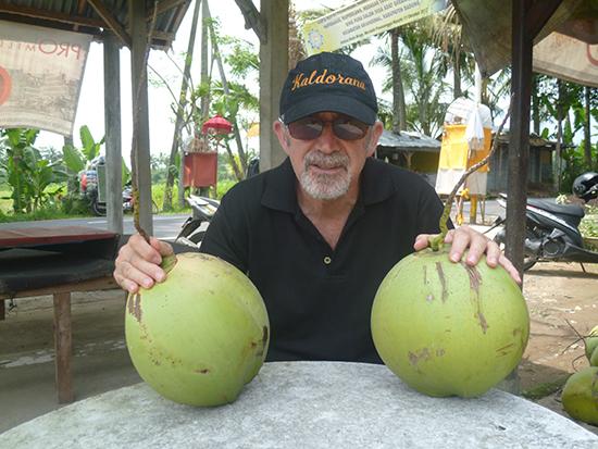 Los cocos de Bali