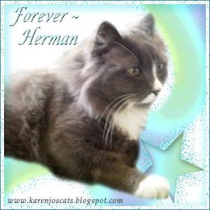R.I.P. Herman