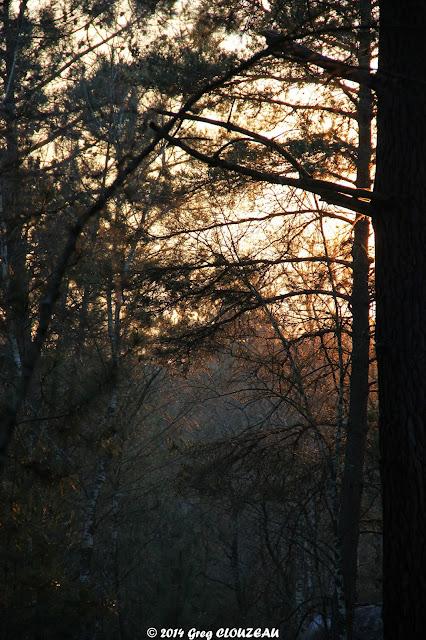 Lumière du soir au Potala (C)2014 Greg Clouzeau