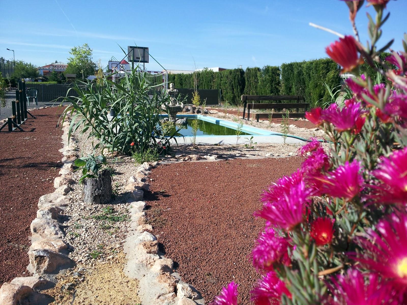 Turismo Rural En La Mancha Casas Rurales Ciudad Real Casa Rural  ~ Arboles De Sombra Para Piscinas