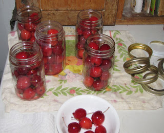 whole crabapples in jars