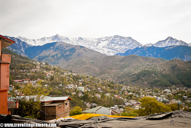 During beginning of this year, I visited Dharmshala for covering finals of Cricket Mahasangram and HPCA(Himachal Pradesh Cricket Association) had arranged for stay in Dhauladhar Hotel, which is just in the middle of Dharmshala Market.This is a view of backside where Dhauladhar Hotel has some open dining area with wonderful view to the valley !!I took Volvo form Delhi and reached early in morning. Dhauladhar Hotel is at walkable distance from Bus stand but since I had more stuff to carry, so got a taxi at very reasonable tariff (50 Rs :) )I entered into the room and it was decent, although very old. Personally I am not very choosy unless things are not neat and well placed. So I found this room a good place to stay for me. Service was also good, although I had an extra advantage of being able to speak in Himachali ! I loved the woodwork there. I have heard of Kangra Suite in this hotel which is considered as best place.Here is a view of some colony from open dining area of Dhauladhar Hotel in Dharmshala !!! This hotel is approximately 4 kilometers far from Cricket Stadium constructed by Himachal Pradesh Cricket Association.Another view of a valley from Dhauladhar Hotel in Dharmshala, Himachal Pradesh, INDIA. Usually people prefer to stay in Mcleodganj as compared to Dharmshala Town.Hotel corridor which connect most of the rooms on second floor. The first suite on the right is Kangra Suite !!!This is back side of Dhauladhar Hotel in Dharmshala ! This could have been better maintained. There is enough space to make a garden as well !!!Another view of a valley from Restaurant of Dhauladhar Hotel in Dharmshala !!!Dhualadhar Mountain ranges are clearly visible from this hotel and people prefer to have their meals in open dining area !!!This is restaurant of Dhauladhar Hotel, which can be seen empty most of the times. It's not that people don't visit, but people prefer to sit in open dining area.There is a small parking area in front of main entry of Dhauladhar hotel, but 