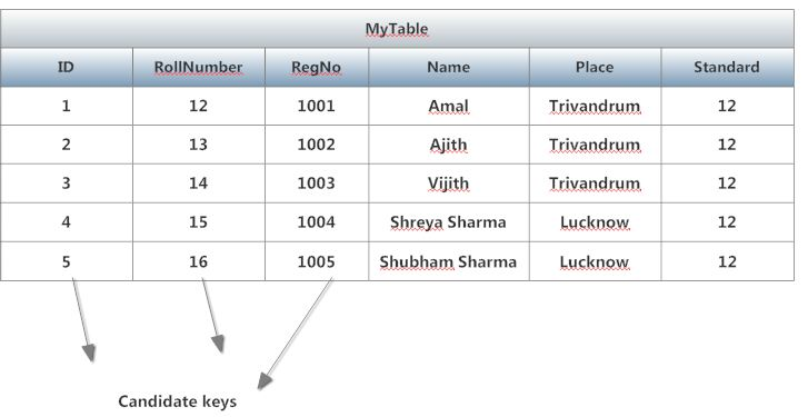 What is a candidate key in sql programmers world for What is table in html