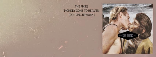 Pixies - Monkey Gone To Heaven (Du Tonc Rework)