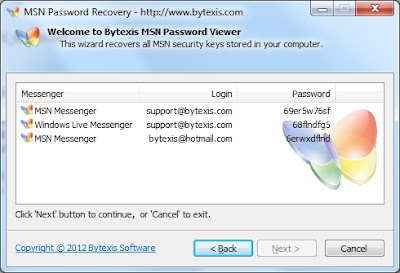Bytexis MSN Password Recovery 1.1.225.2012