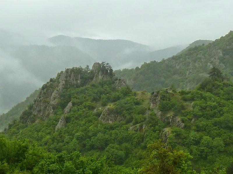 Balkan Chamois
