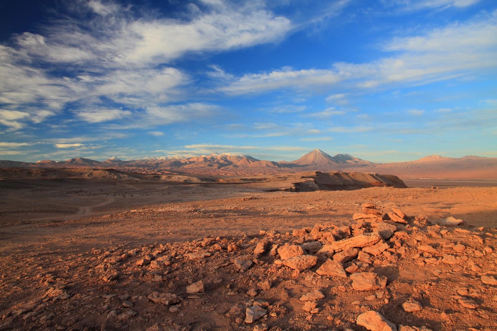 Ecosistema terrestre - Imagui