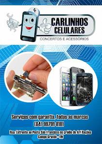Carlinhos Celulares - Consertos e Acessórios em Campo Grande