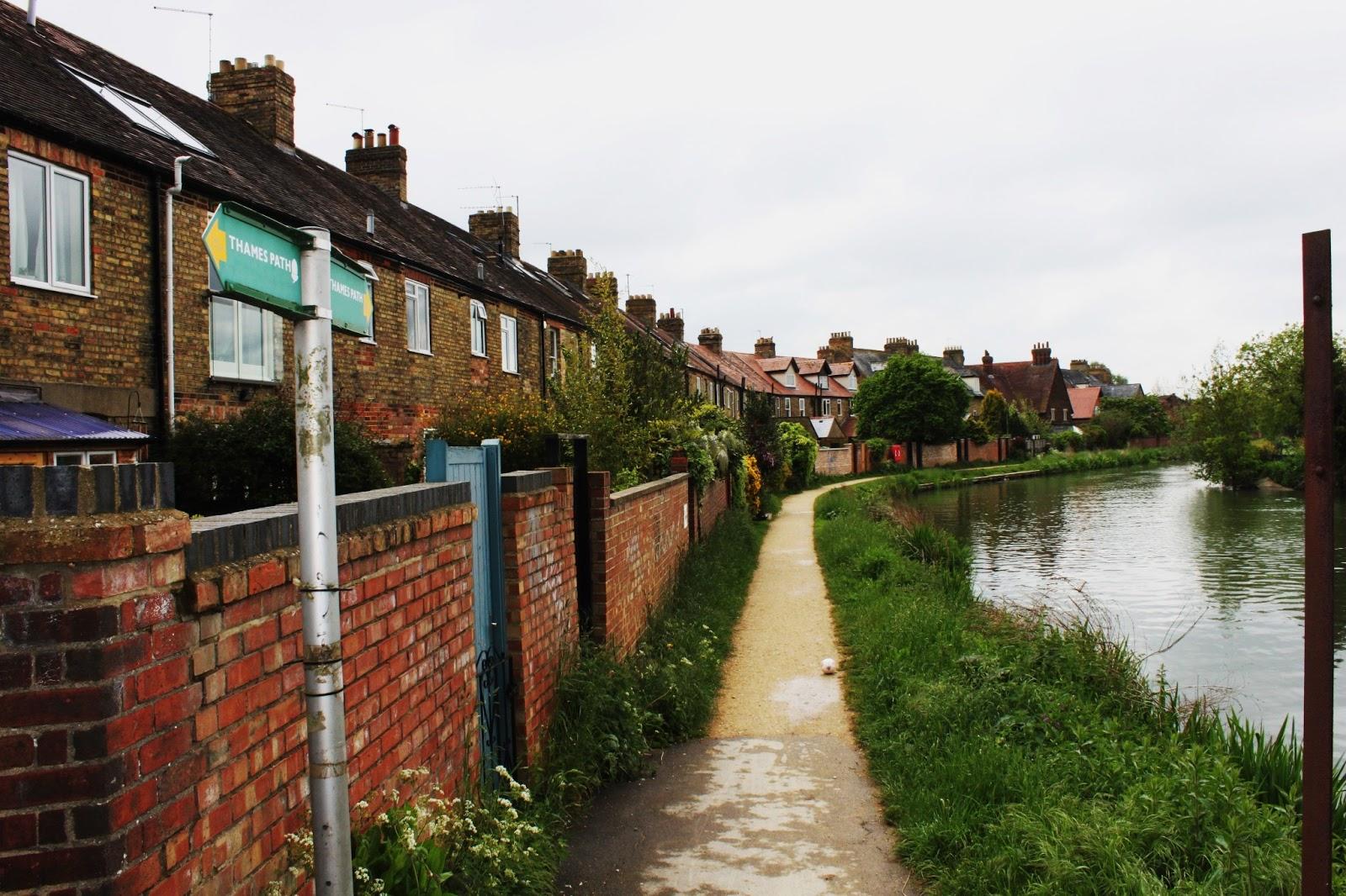 bridge essay oxford