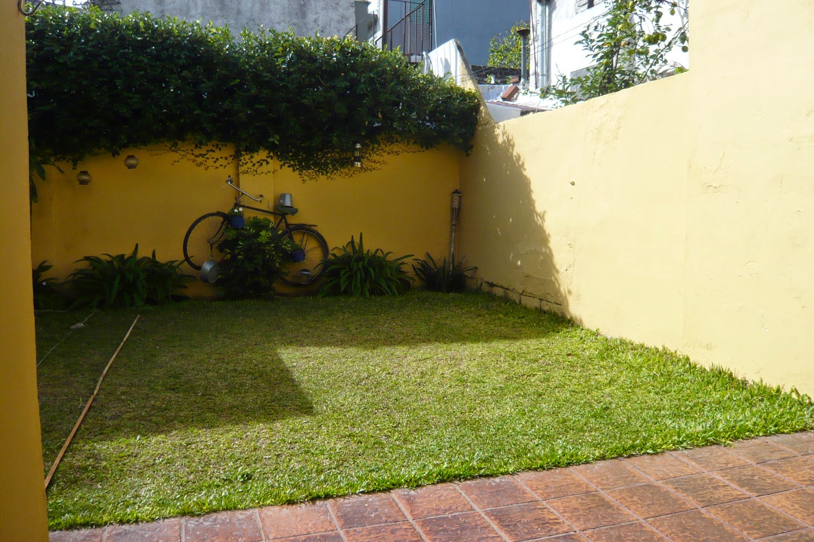 Cc arquitectos proyecto de pileta en jard n peque o en beccar for Jardines pequenos pegados a la pared