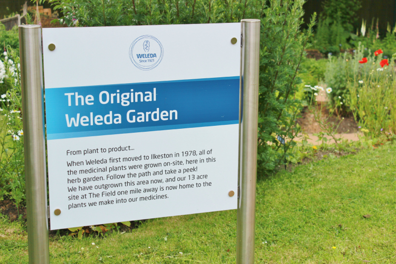 A day at the Weleda gardens in England