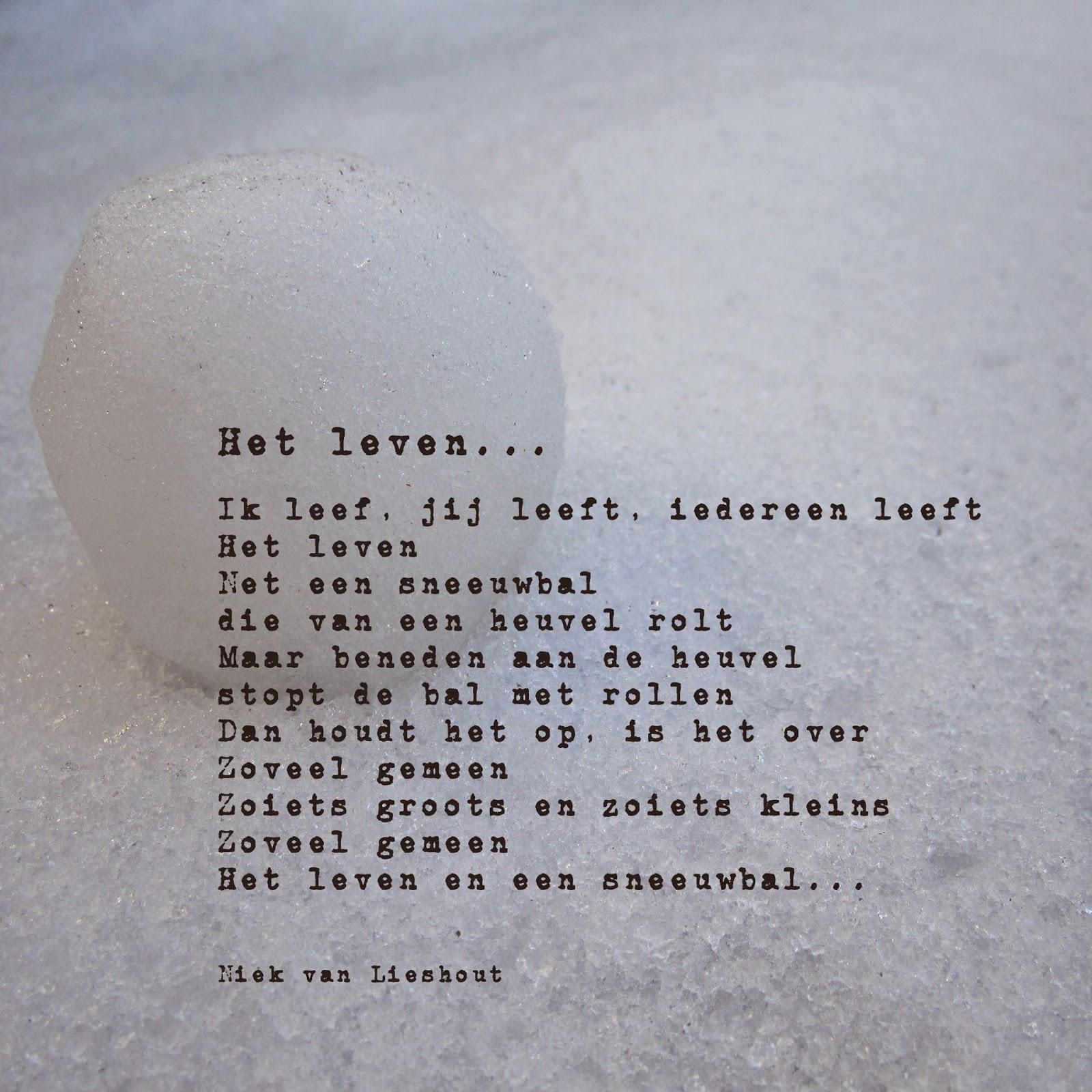 verjaardagstaart gedicht