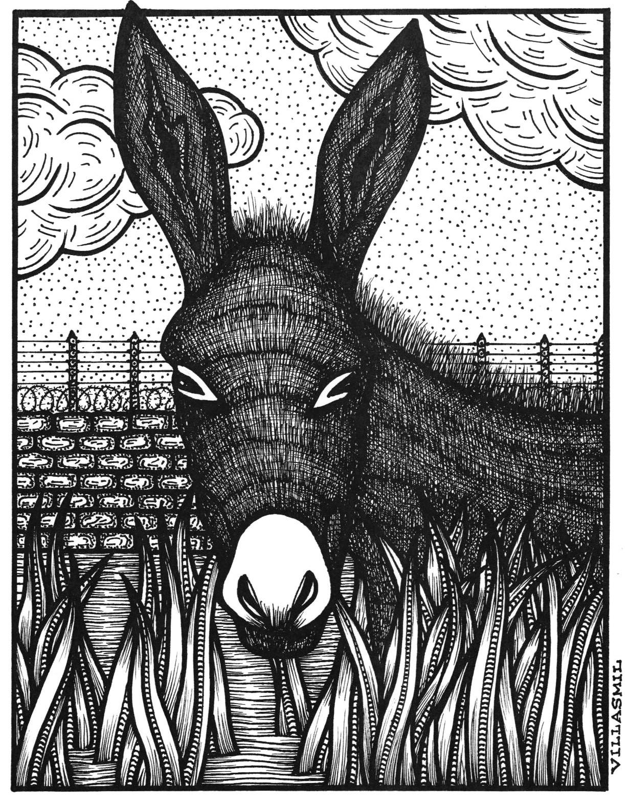 """De la fábula """"El burro1222"""