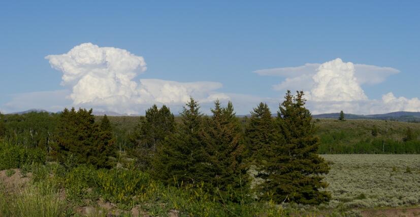 towering cumulus 1