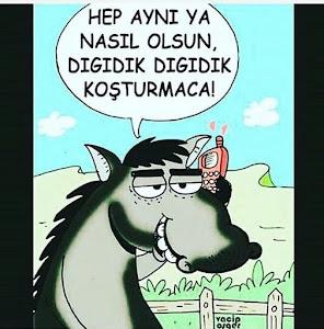 PAZARTESİ NEŞESİ :)