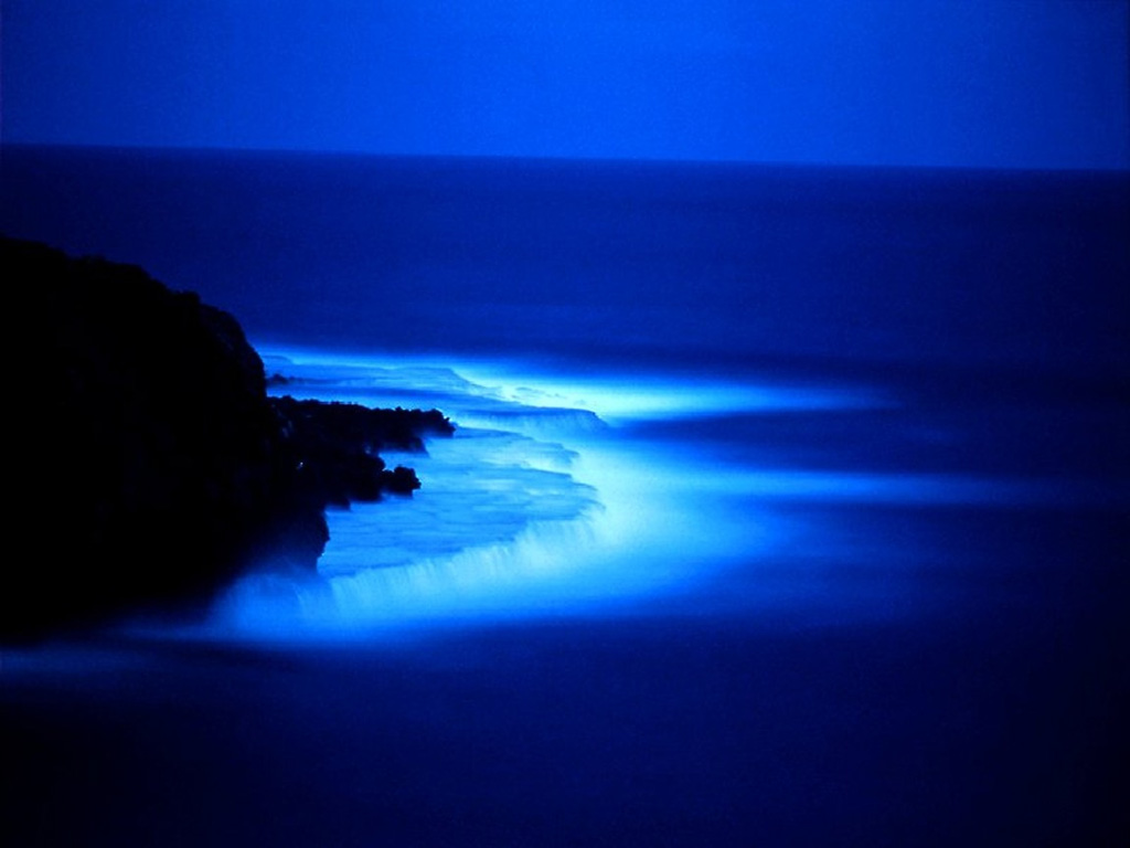 http://1.bp.blogspot.com/-wJCP4ueffKM/TV5tRwBpbpI/AAAAAAAAAAM/geMj7iZEse8/s1600/blue-sea-at-night-wallpaper.jpg