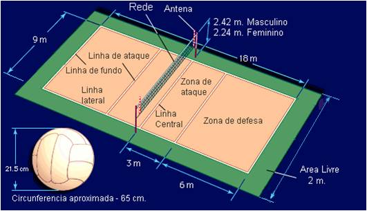 Fivb volleyball court dimensions