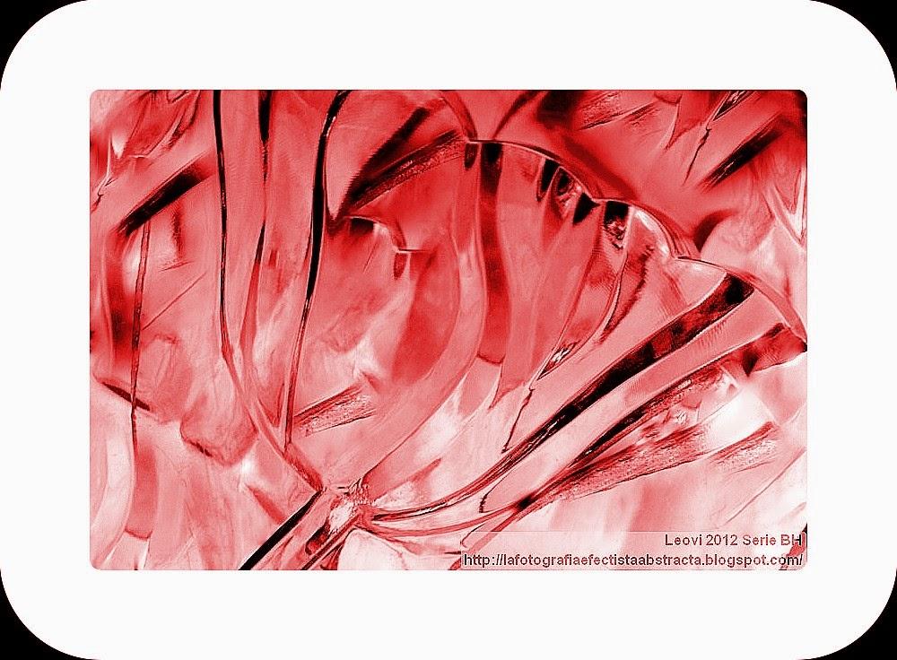 Foto Abstracta 3312  Su cuerpo hecho pétalos y su alma hecha olor (Homenaje a Rubén Darío) - His body made petals  and his soul made smell (Tribute to Rubén Darío)