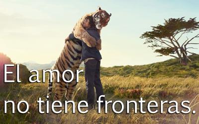 El amor no tiene fronteras - Amistad entre humanos y animales