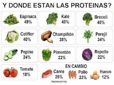 Alimentos vegetales con más proteínas | Verduras y Vegetales