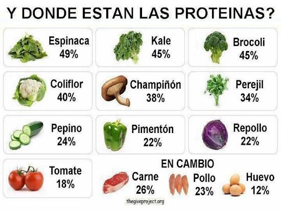 Alimentos vegetales con más proteínas