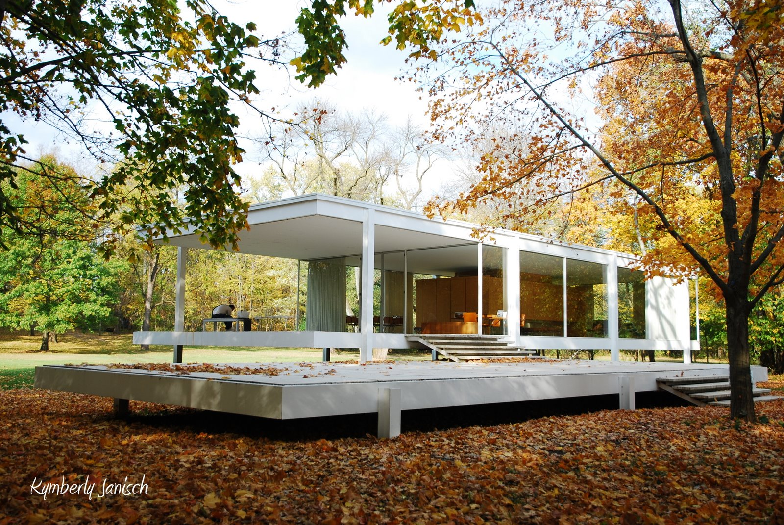 Domestic current nikki 39 s case study domestics as for Case mies van der rohe